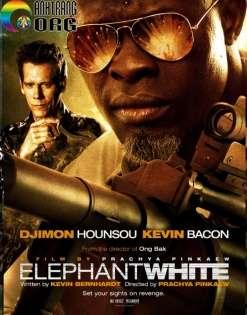 Voi-TrE1BAAFng-Elephant-White-2011